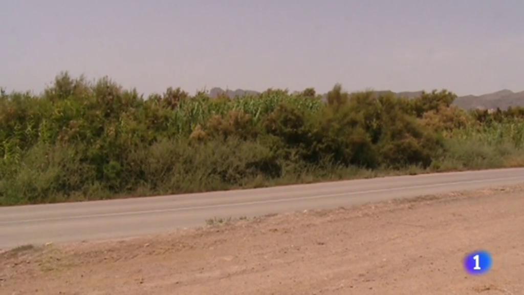 Una mujer ha sido detenida en Murcia, como presunta autora de la muerte de su hermano