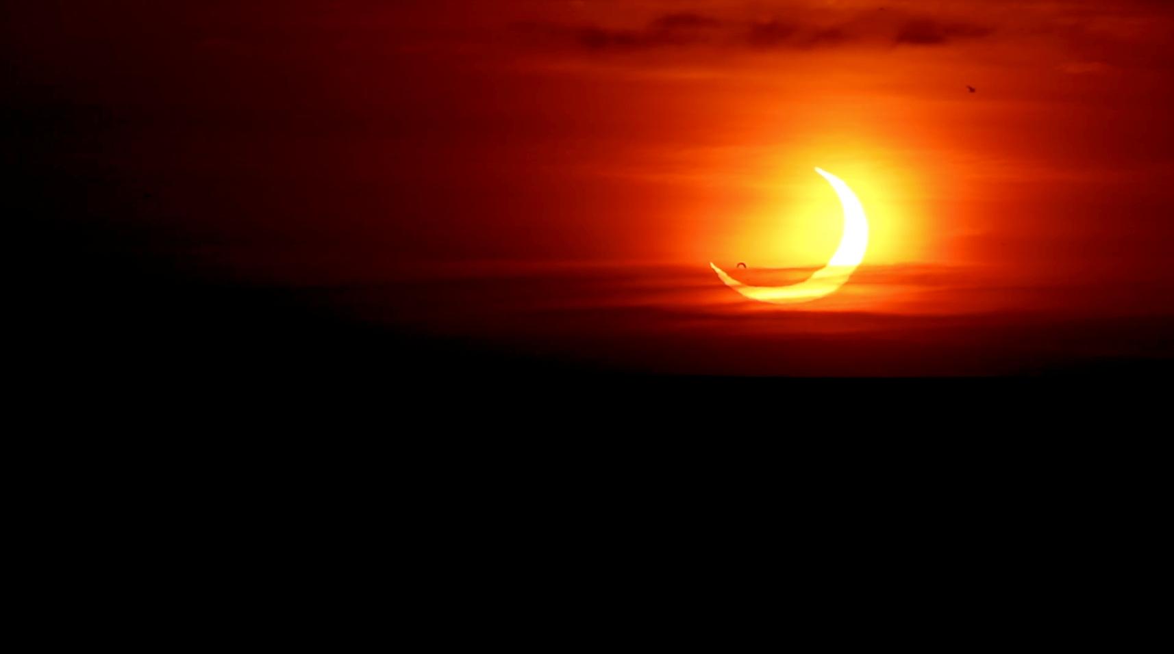Pájaros volando por delante del eclipse parcial de Sol en St. Catharines, Ontario, Canadá.