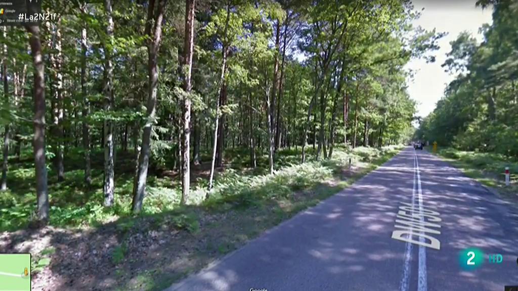 Otro bosque protegido talado