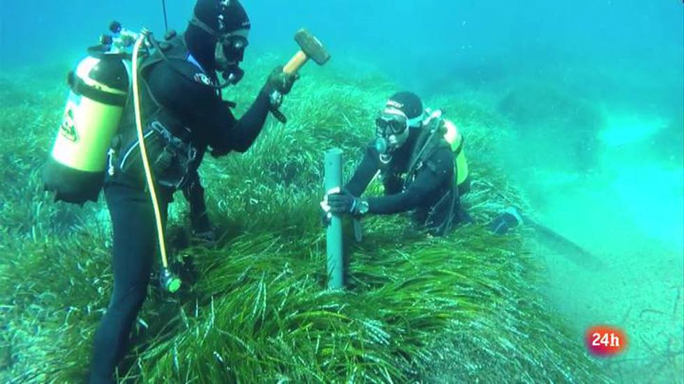 Lab24 - Reportaje -  El Mediterráneo de hace milenios