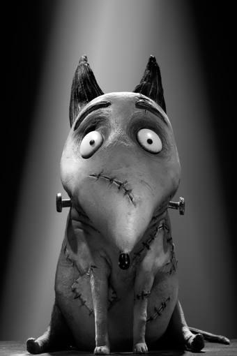 Sparky, el perro protagonista de 'Frankenweenie'