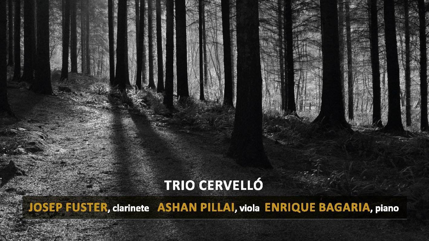 Estudio 206 - Trio Cervelló