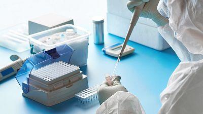 El CSIC ensayará con animales una posible vacuna contra la COVID-19 la próxima semana
