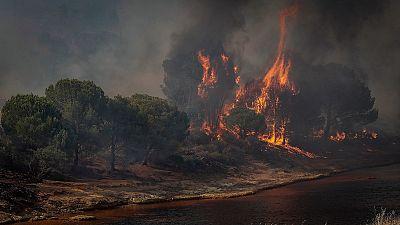 Los desastres naturales aumentan drásticamente desde 2019
