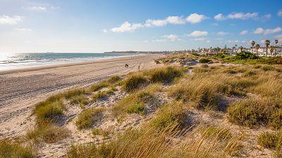 La playa de Cádiz en la que todo el mundo quiere estar