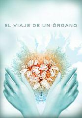 El viaje de un órgano