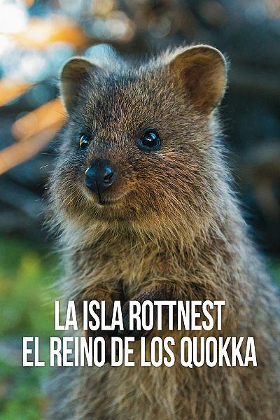 La isla Rottnest el reino de los quokka