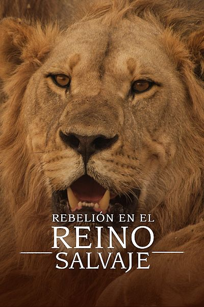 Rebelión en el reino salvaje