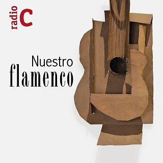 Nuestro flamenco con