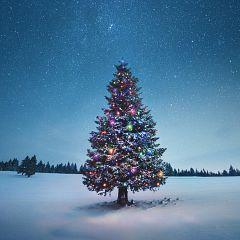 Especiales de Navidad