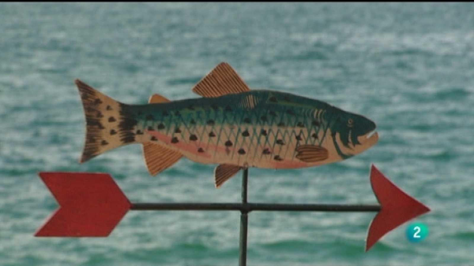 El escarabajo verde - Las espinas del salmón - Ver ahora