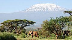Buscamundos - Kenia y Somalia: placer y dolor de África - Avance