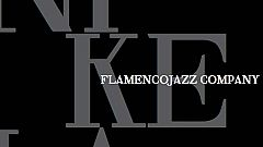 Disco del año 2011 - Flamenco Jazz & Co.