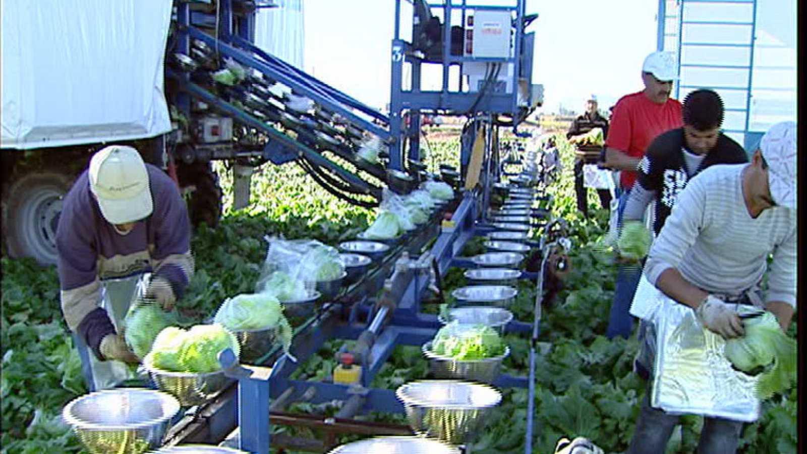El gobierno congelará el Salario Mínimo Interprofesional en 2012