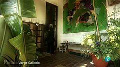 Un cuento para año nuevo - Jorge Galindo - Pintura