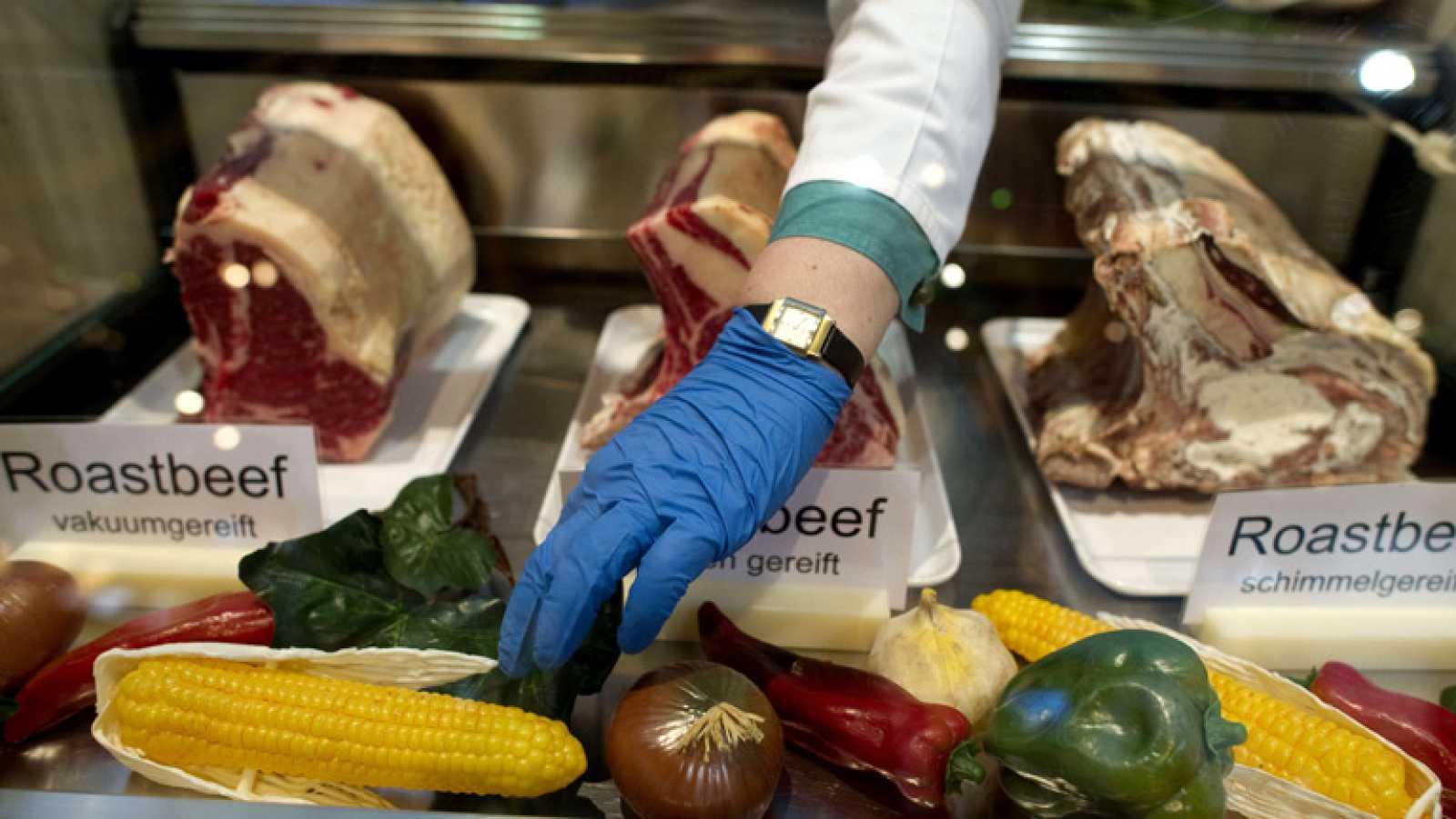 89 millones de toneladas de alimentos van a la basura cada año en la Unión Europea