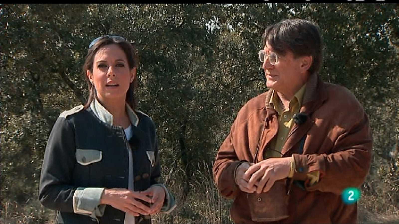La 2 Noticias - 09/03/12 - Ver ahora