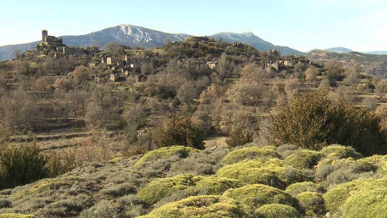 La mitología de los campos de Huesca en el recuerdo de Álex