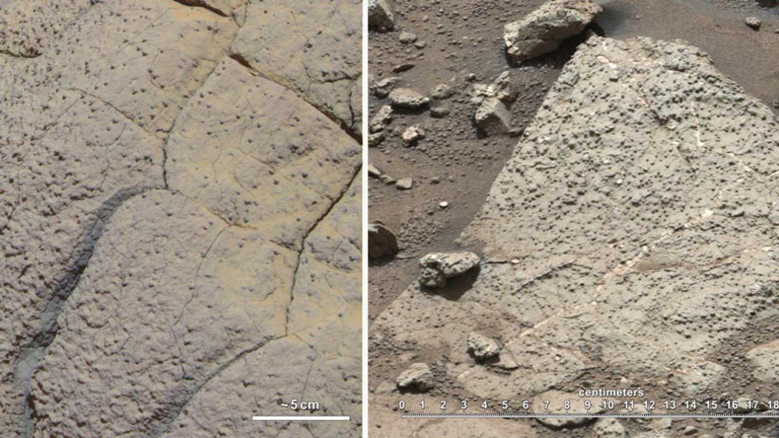 Marte pudo albergar vida