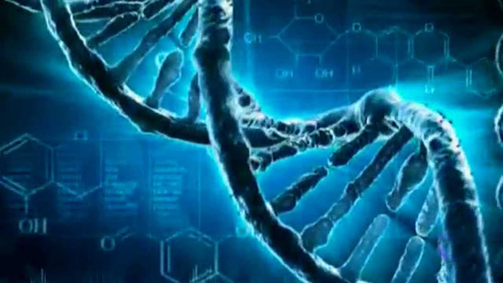 Un grupo de investigadores internacionales identifica las causas genéticas de los cánceres más comunes
