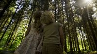 Los bosques son de todos...¡cuídalos!