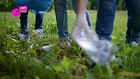 CAMPAÑA 'ECOSISTEMAS TERESTRES' - ¡Cuidemos los parques como nuestra casa!
