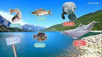 CIENCIAS NATURALES - Los animales que viven en el agua