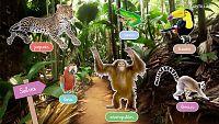CIENCIAS NATURALES - Los animales que viven en la tierra