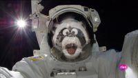 Despegamos rumbo a la Luna
