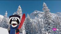 'Está mapachando' - Deportes de invierno y más