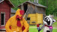 'Está mapachando' - Entrevista avícola y más