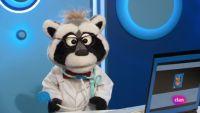 'Está mapachando'...Doctor Nacho y mucho más