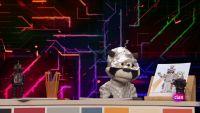 'Está mapachando'...Mapache TV y mucho más