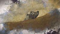 CAMPAÑA 'MUSEO DEL PRADO 200 AÑOS' - ¿Sabías que...? Goya y el roquedal misterioso