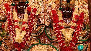 Dioses de Gujarat (India)