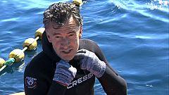 España a ras de cielo - Francis nada entre atunes de más de 200 kilos