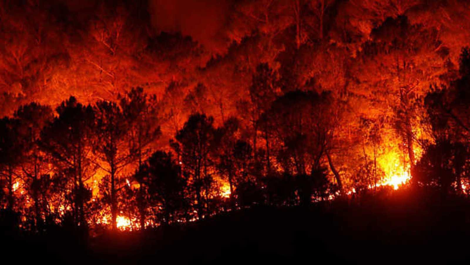 Repor - El fuego lo quemó - ver ahora