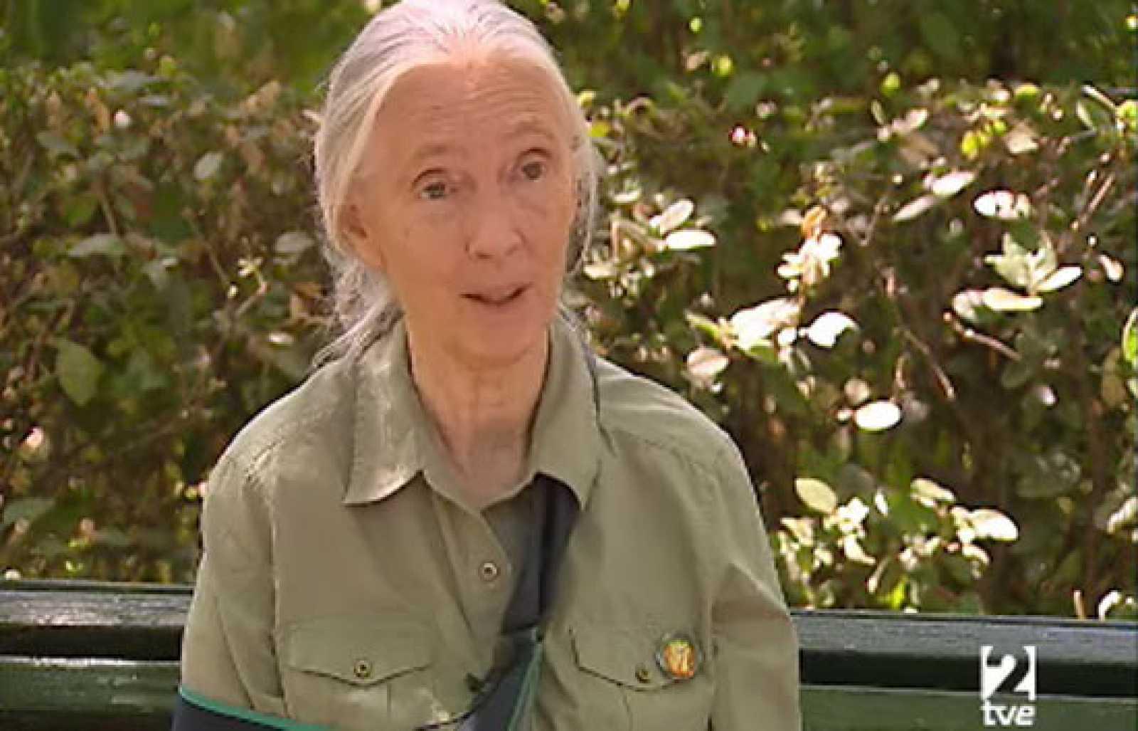 Entrevista a Jane Goodall