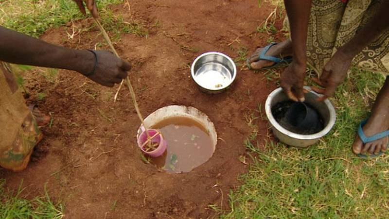 El 80% de las patologías en el mundo están relacionadas con enfermedades trasmitidas por el agua