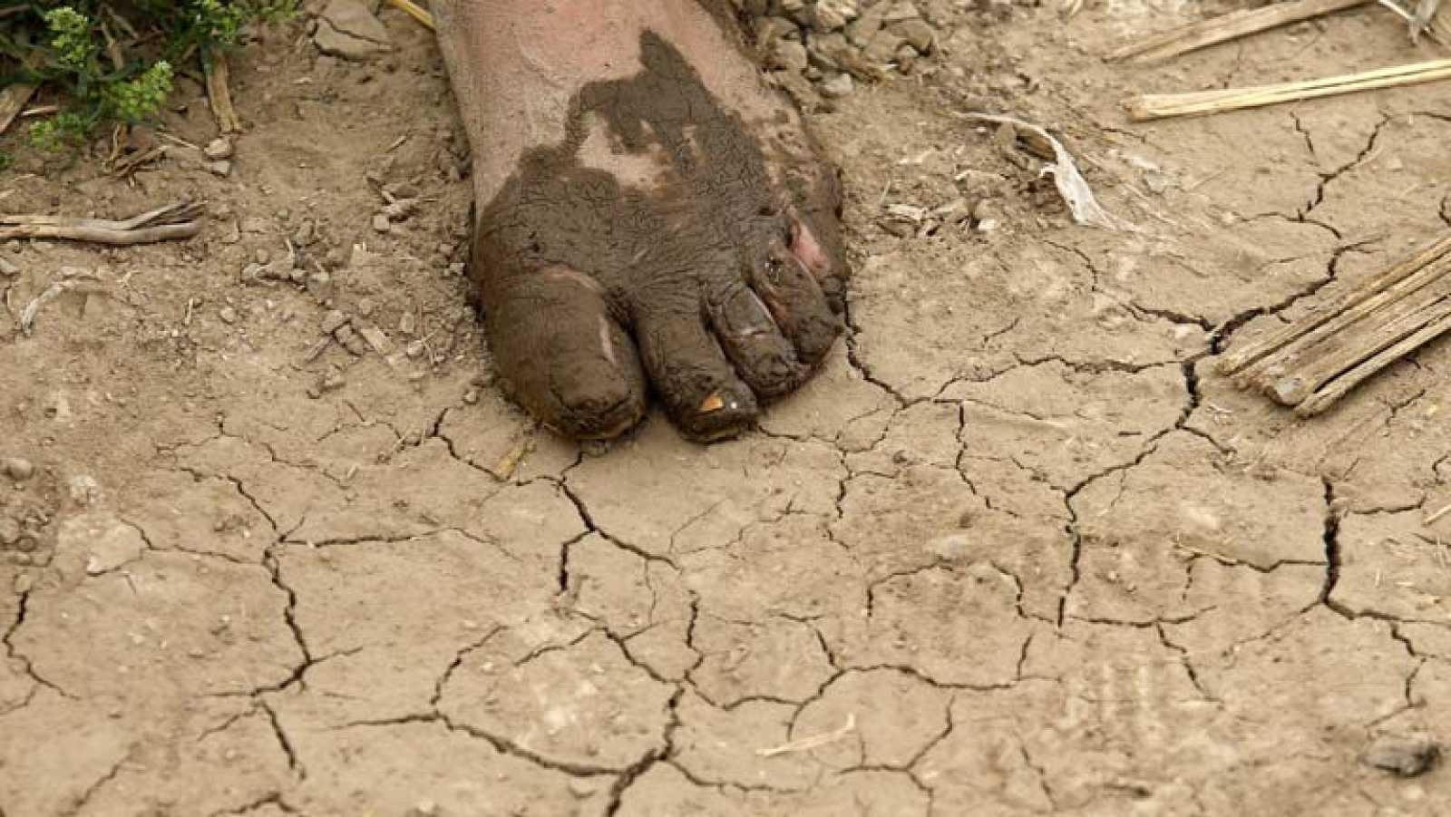 Un 80% de la población mundial ya se ve afectada por la falta de agua