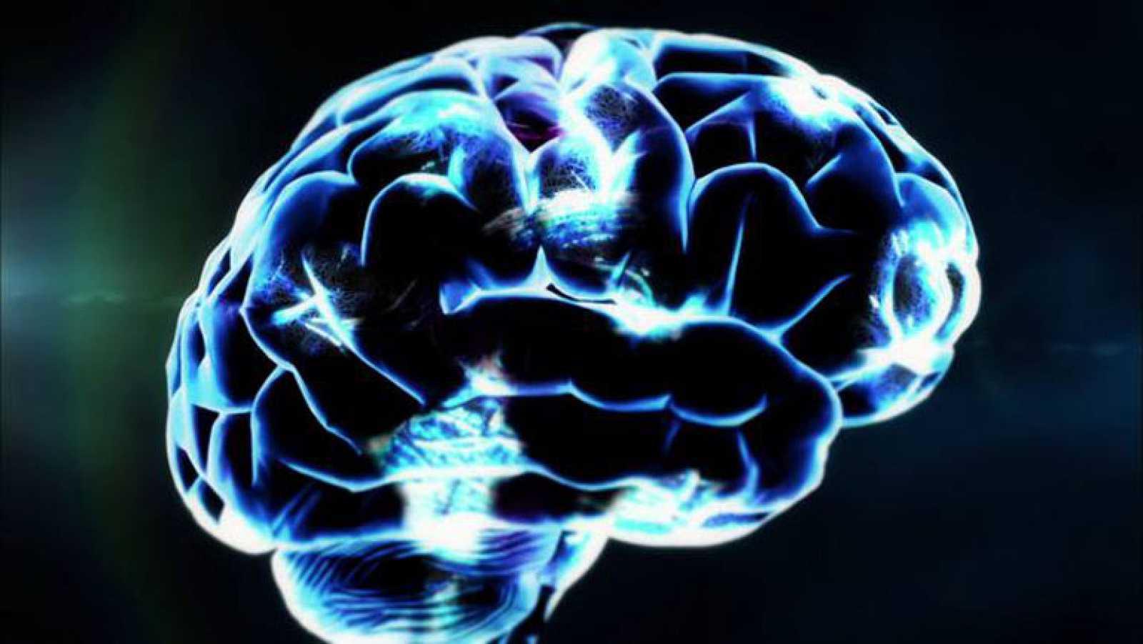 La Noche Temática - Avance: 'El cerebro de Hugo'