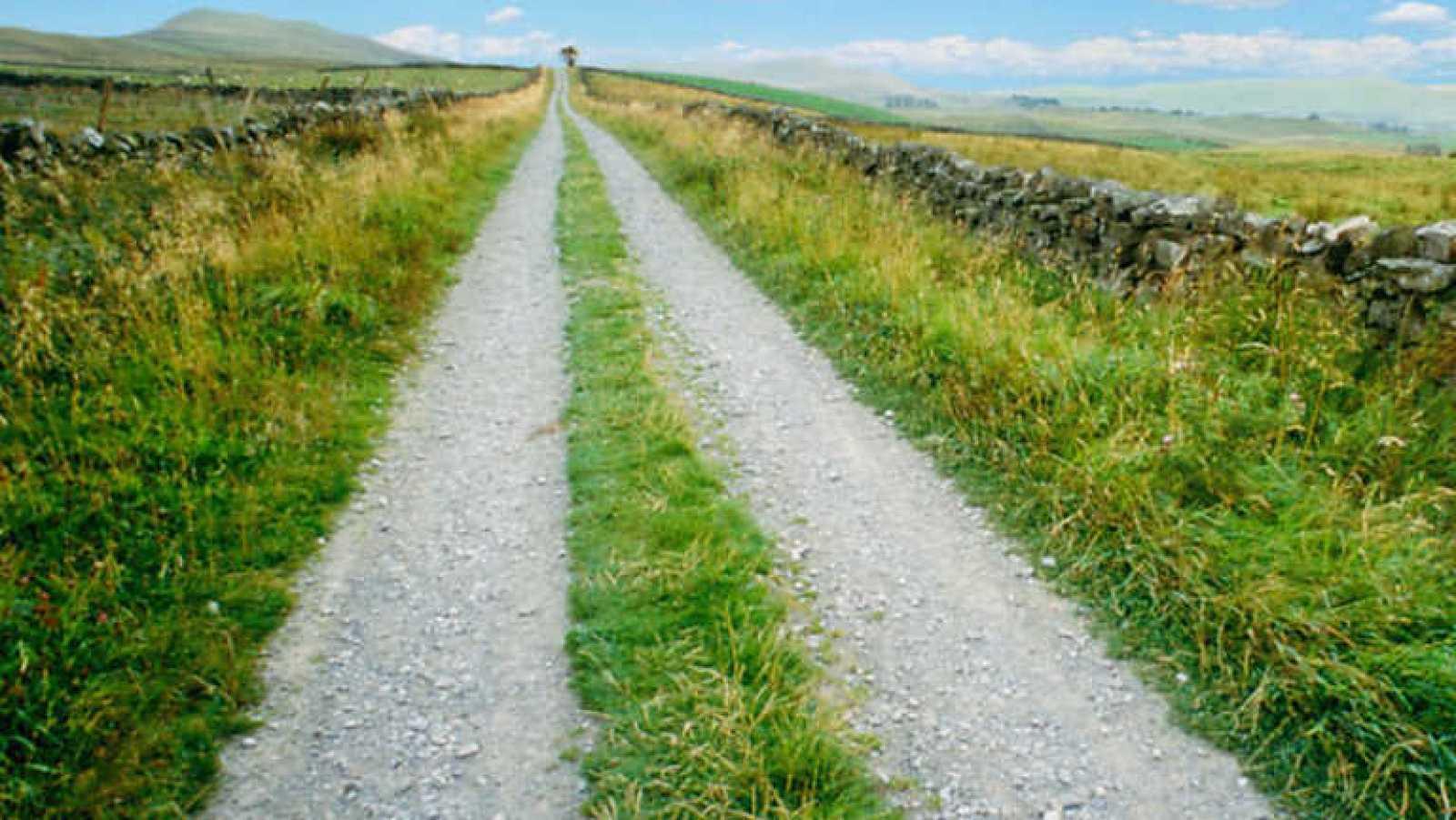 El Escarabajo Verde - Camino público: prohibido el paso - Ver ahora