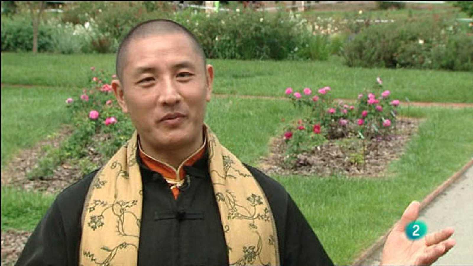 Para Todos La 2 - Vídeo - Tulku Lama