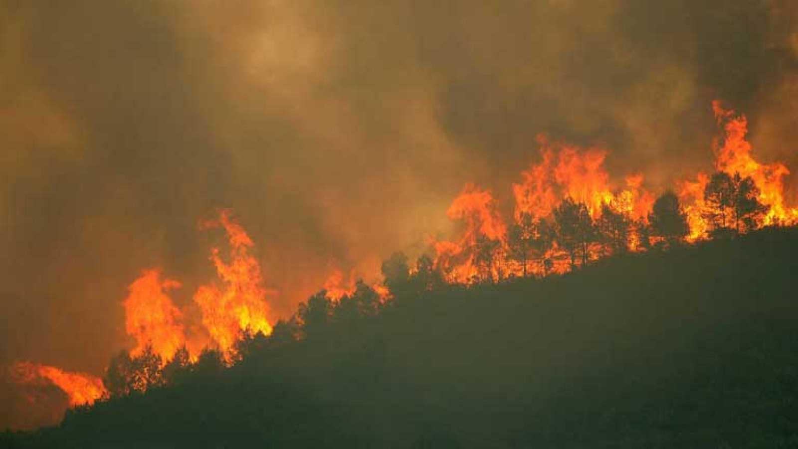 Unas cincuenta personas siguen fuera de sus casas por el incendio de Tivissa