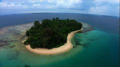 Paraísos submarinos - Avance: 'La isla del diablo' y 'Las islas molucas'