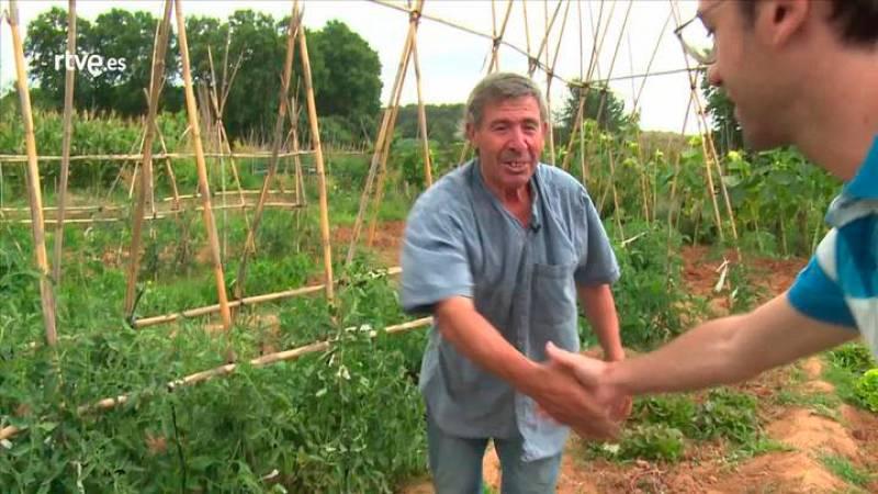 Repor - Pisa la Calle -  Cultivar da sus frutos