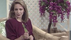 Una tarde de verano - Elena Sánchez Caballero