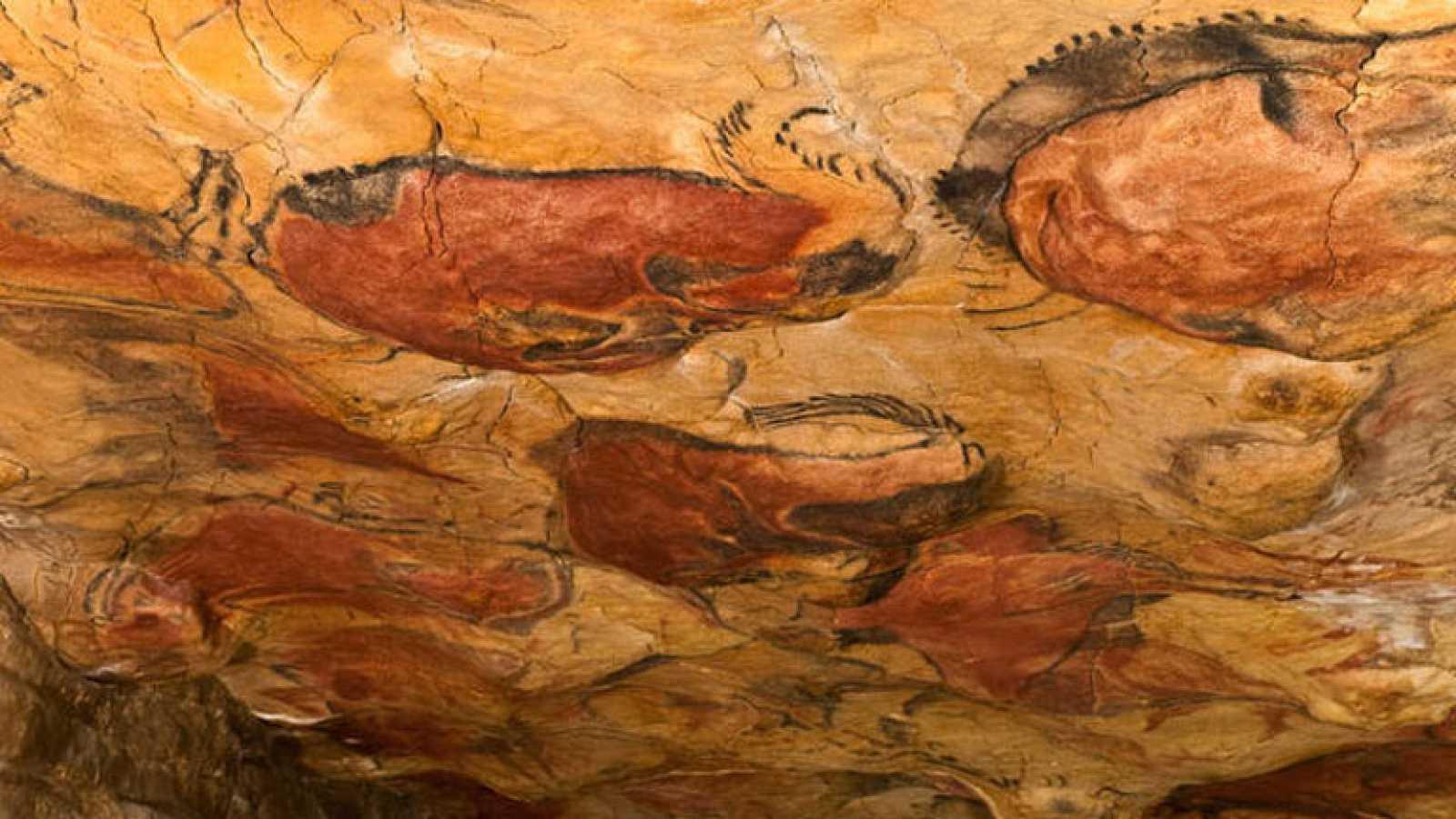 La cueva de Altamira seguirá abierta a las visitas hasta febrero de 2015 al no suponer un riesgo para las pinturas