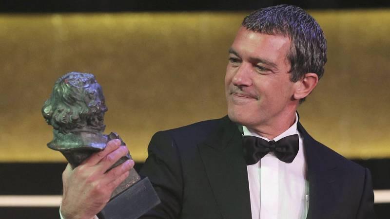 """Antonio Banderas, Goya de Honor 2015: """"Todo lo que tengo se lo debo a mi profesión"""""""