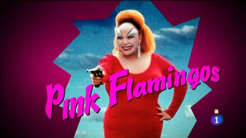 Alaska y Segura: Final Pink Flamingos